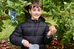 GS_ApplePicking_11